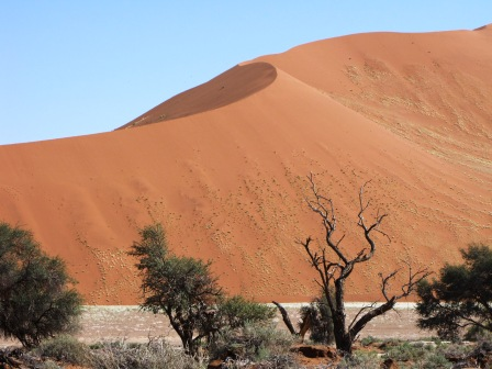 Dunes on an overland Tour